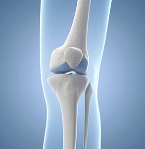 Calcium strengthening joints and bones